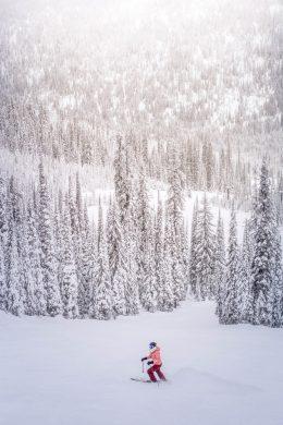người trượt tuyết và cánh rừng trắng xóa