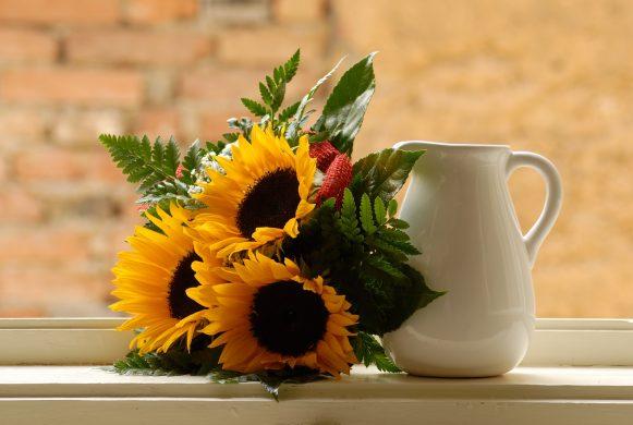 hoa huong duong trang tri dep