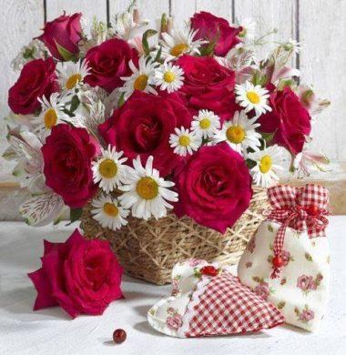 anh lang hoa hong do ben cuc hoa mi ngot ngao nen tho