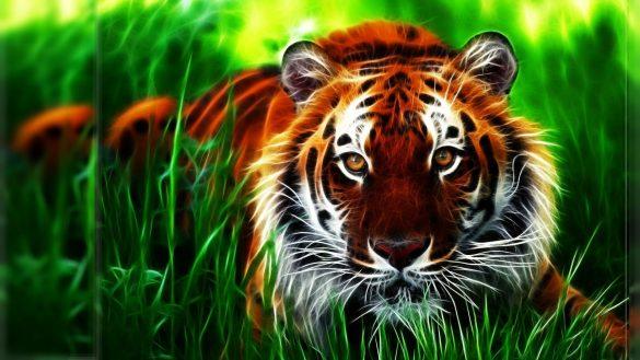 Ảnh nền 3D con hổ