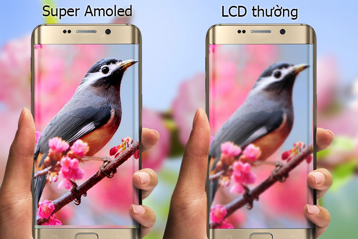 so sanh man hinh super amoled vs lcd thuong