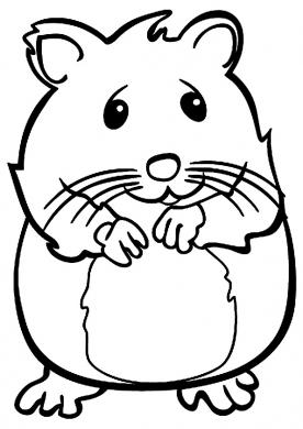 tranh tô màu chuột hamster