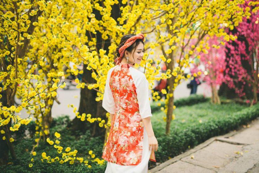 hình ảnh girl xinh bên hoa mai ngày tết