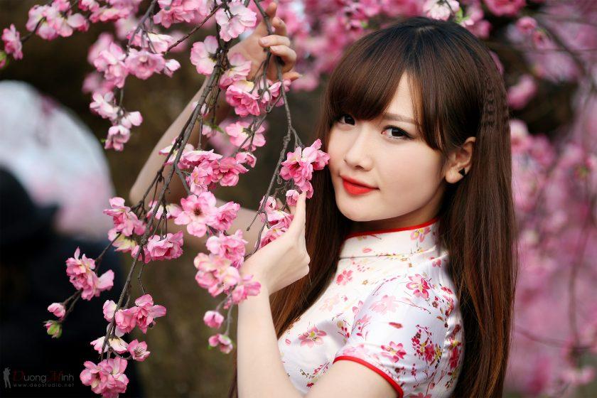 ảnh girl xinh và hoa đào