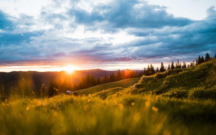 ảnh thiên nhiên làm background