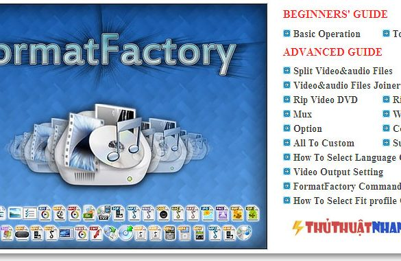 cat-video-bang-format-factory