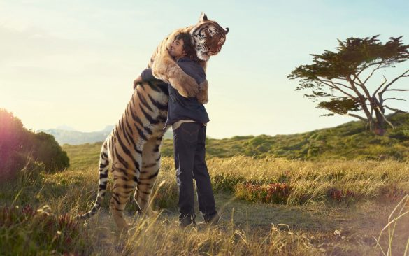 hình ảnh con hổ to lớn ôm người