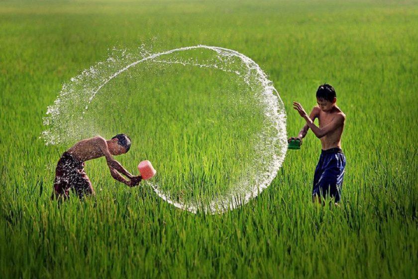 hình ảnh đẹp về quê hương Việt nam