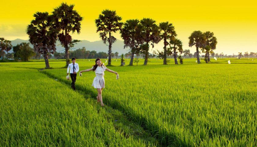 hình ảnh quê hương tươi đẹp