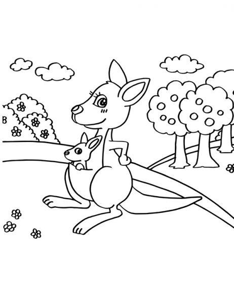 hình tô màu con chuột túi Kangaroo