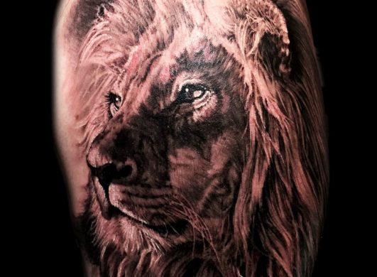 hình xăm sư tử 3D tuyệt đẹp