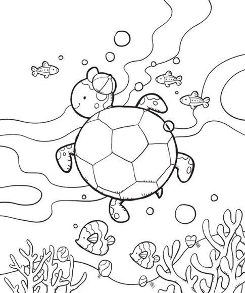tải tranh tô màu con rùa