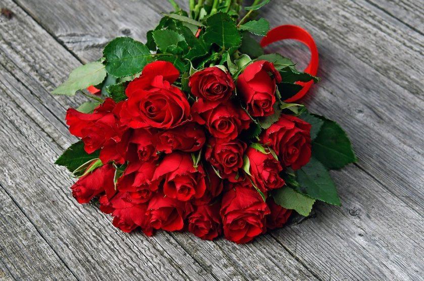 anh bo hoa hong valentine dep nhat