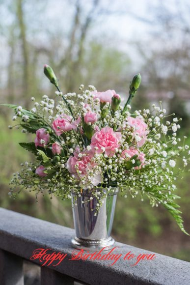 hoa sinh nhat tang con gai