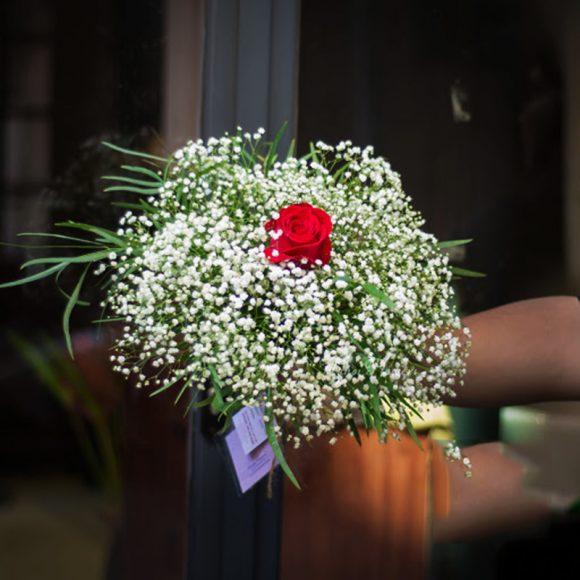 hoa valentine hoa baby va hoa hong