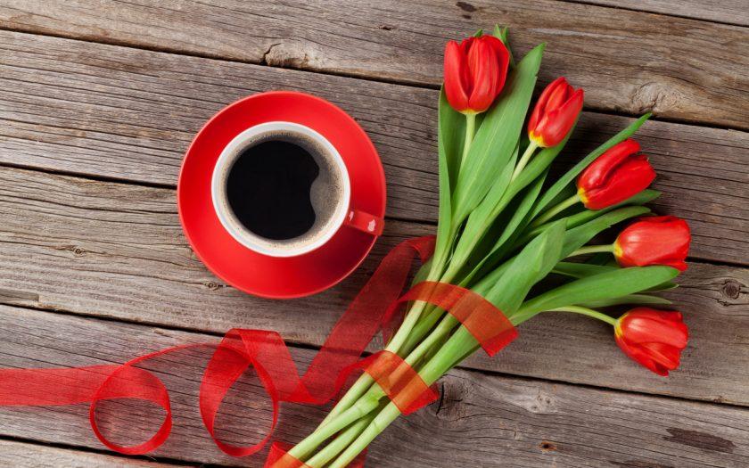 hoa valentine tulip tang nguoi yeu