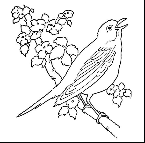 tranh con chim dau tren canh hoa