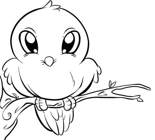 tranh vẽ con chim nhỏ dễ thương đáng yêu
