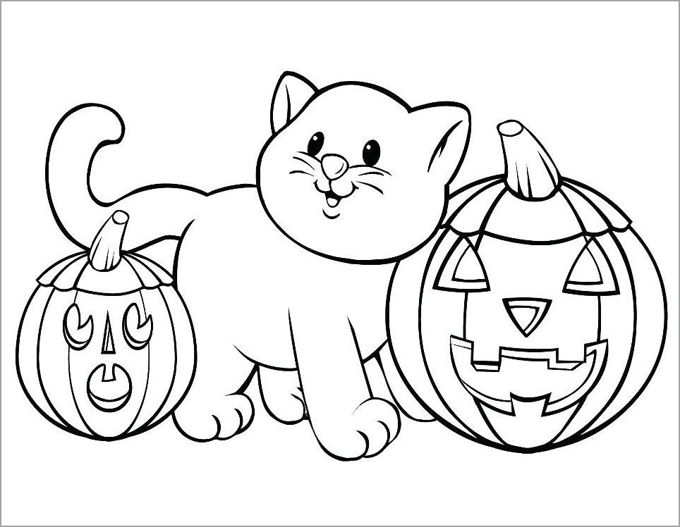 tranh mèo con bên bí ngô hallowin