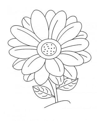 tranh to mau hoa huong duong