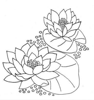 tranh to mau hoa sen dep