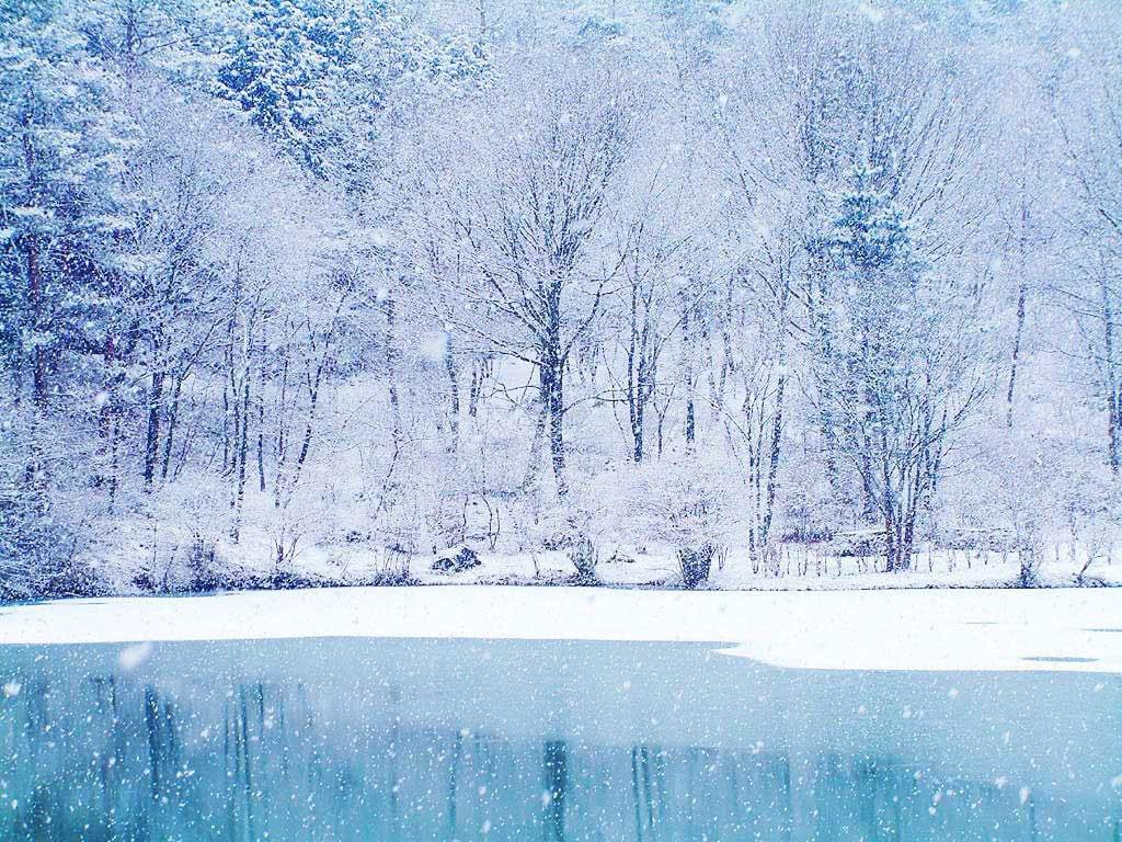 ảnh tuyết mùa đông đẹp