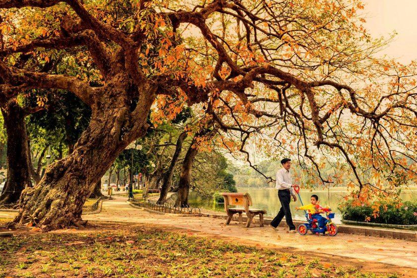 hình ảnh hà nội mùa thu đẹp