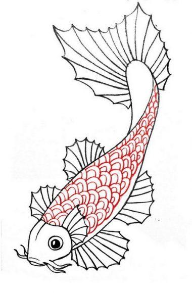 hình ảnh vẽ cá chép