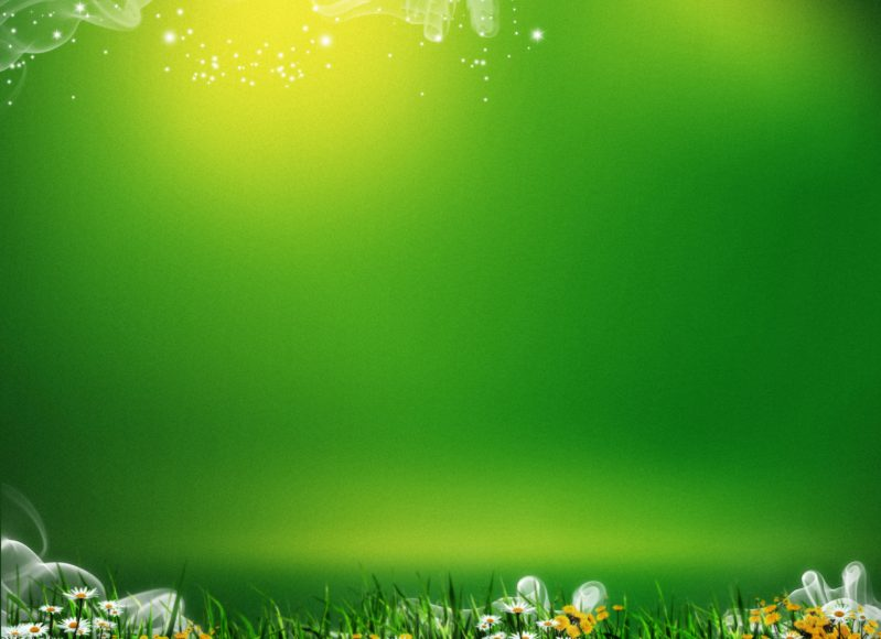 hình nền màu xanh lá cây đẹp hd