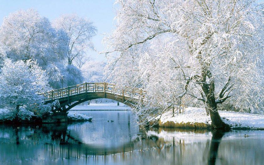 khung cảnh mùa đông tuyết trắng tuyệt đẹp