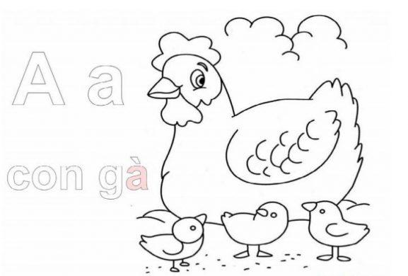 tranh tô màu con gà và chữ cái cho bé 4 tuổi