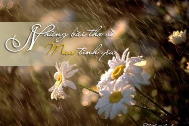bài thơ về mưa những câu nói hay về mưa