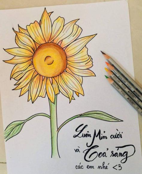 hình vẽ tô màu hoa hướng dương cho bé