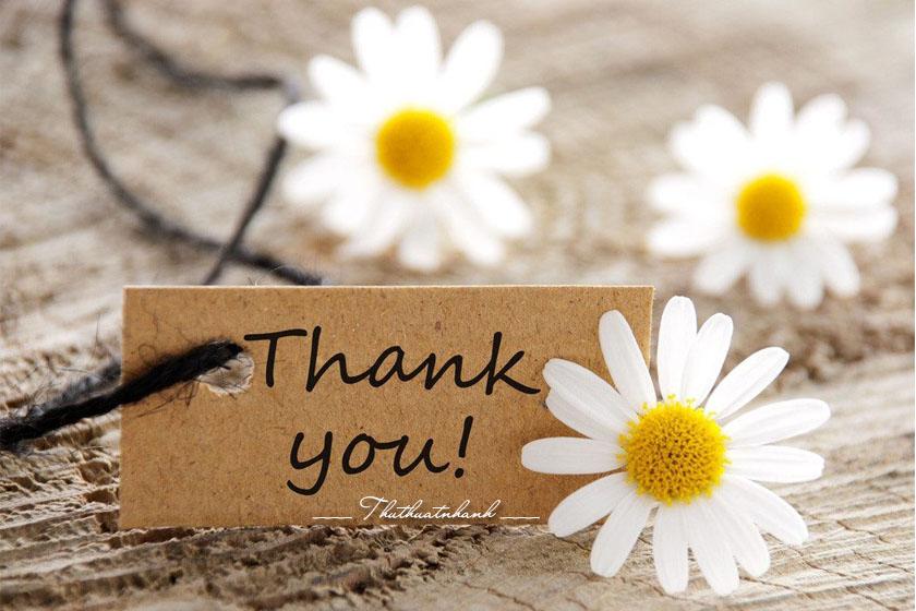 lời cảm ơn là gì ý nghĩa lời cảm ơn