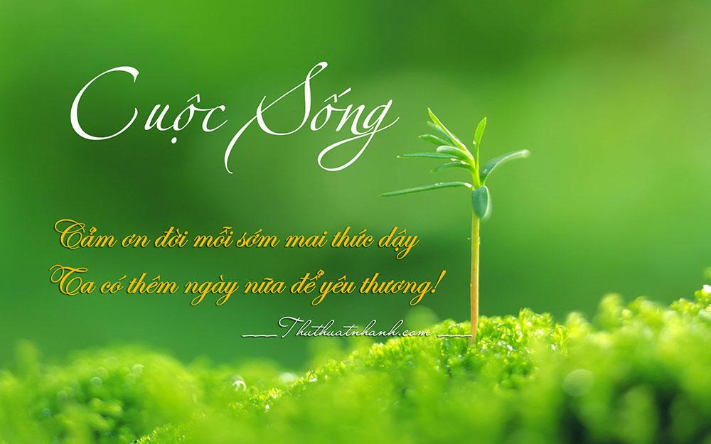 Những bài thơ hay ngắn ý nghĩa về cuộc sống tươi đẹp