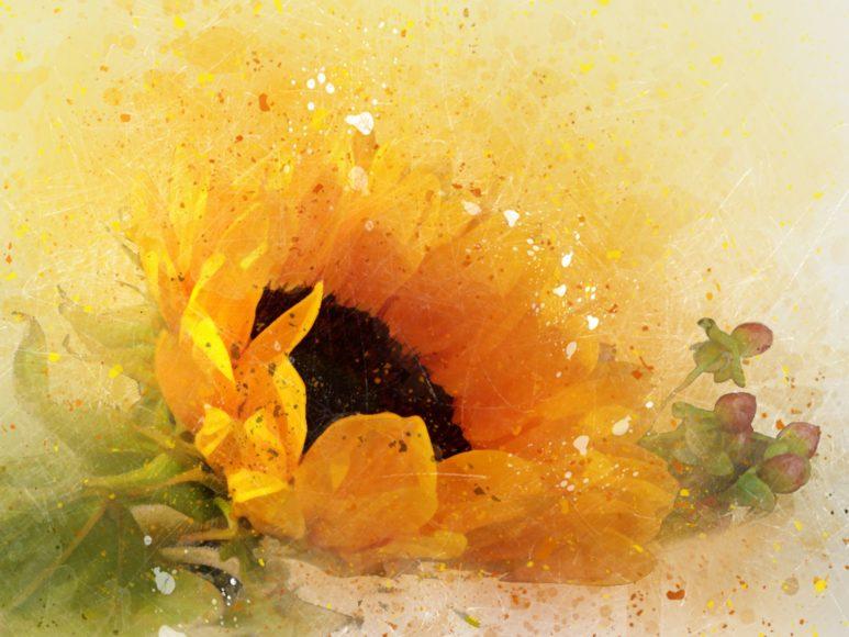 tranh vẽ hoa hướng dương 3D cực độc đáo