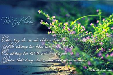 những bài thơ tình yêu buồn khi chia tay