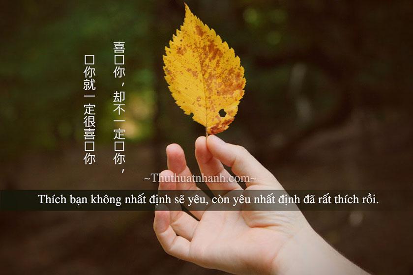 Những câu nói ngôn tình bằng tiếng Trung