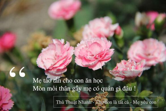 thơ con là tất cả - mẹ yêu con