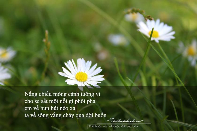 thơ vui buồn với cuộc đời bạc bẽo