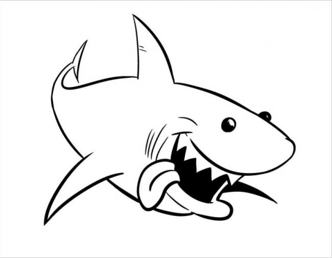 tranh con cá mập cho bé