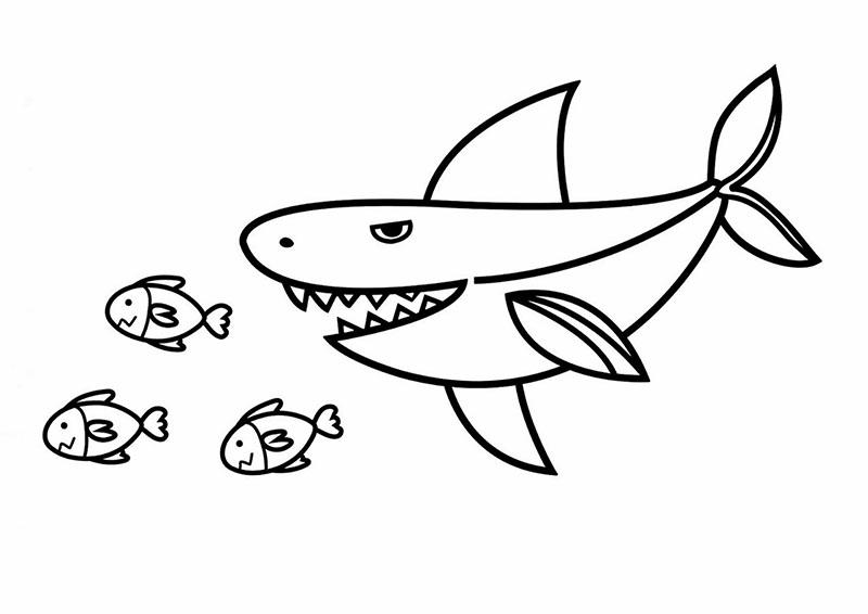 tranh con cá mập đang săn mồi cho bé tập tô