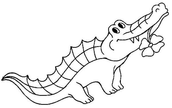 tranh con cá sấu đang ngậm bông hoa cho bé tập tô