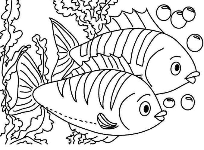 tranh tô màu con cá rô