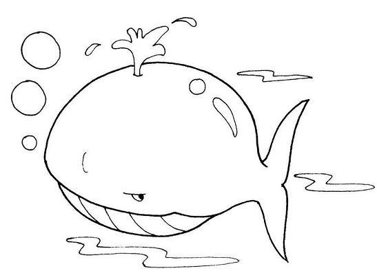 tranh vẽ cá voi xanh cho bé tập tô