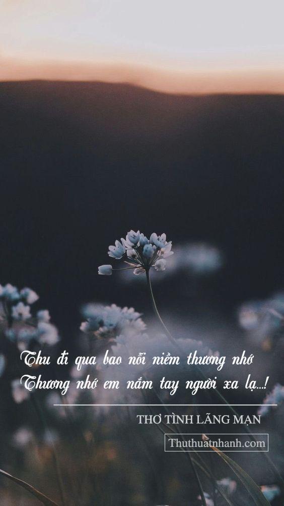 thơ tình yêu lãng mạn