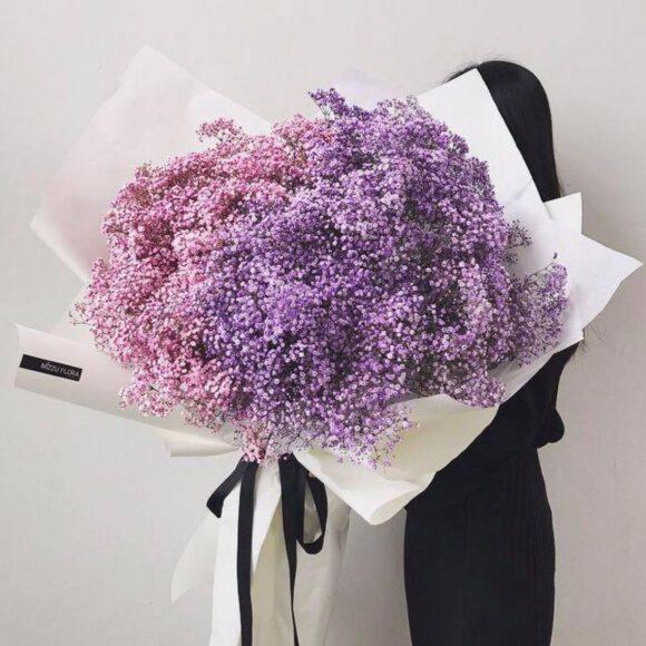 Hình ảnh, ý nghĩa của hoa Baby - mỏng manh như hơi thở trẻ thơ