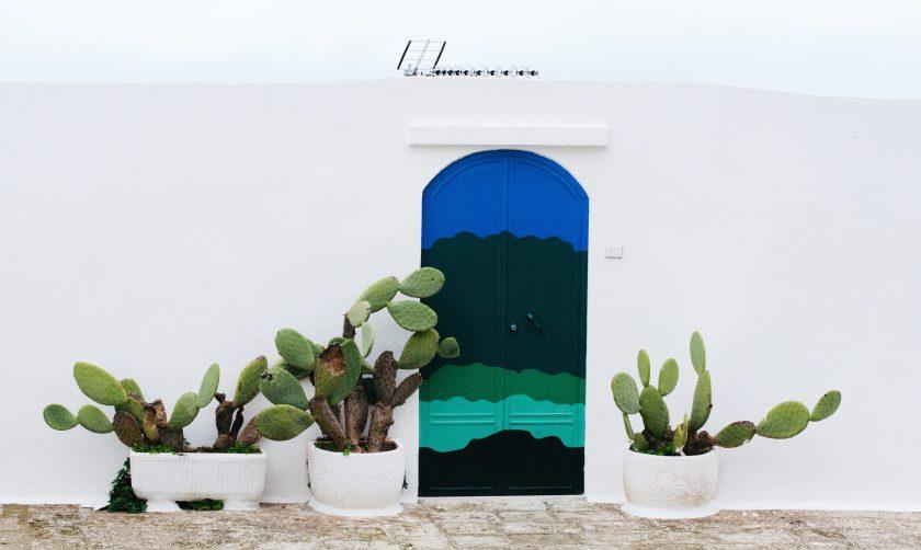 ảnh cây cảnh đẹp - cây cảnh trang trí trước nhà