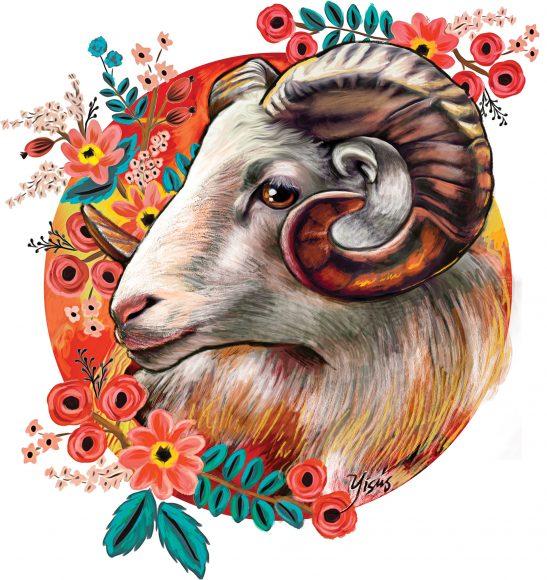 ảnh cung bạch dương - chú cừu biểu tượng cùng ngàn hoa