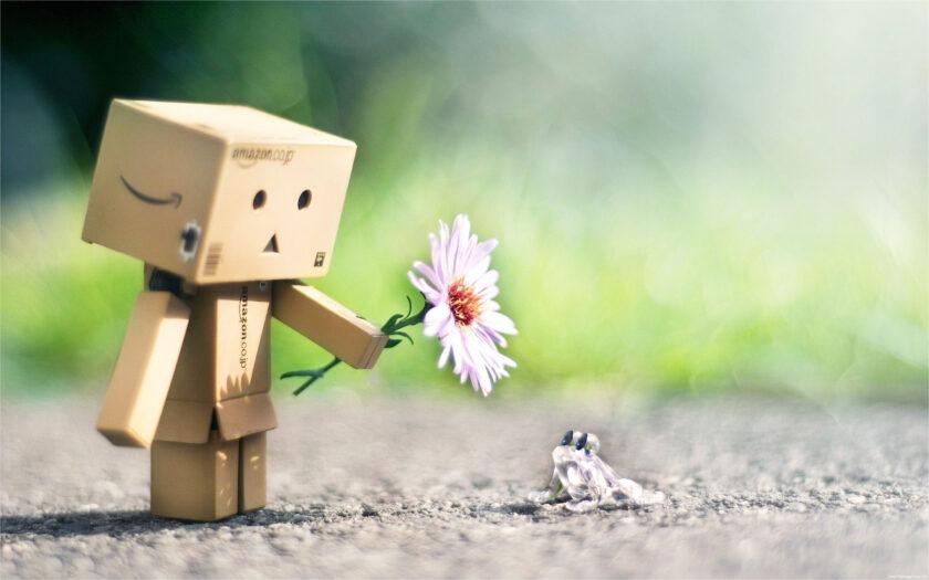 ảnh người gỗ tặng hoa